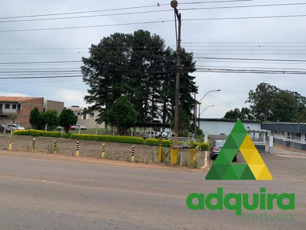 Terreno área industrial - Bairro Uvaranas em Ponta Grossa - Foto 5