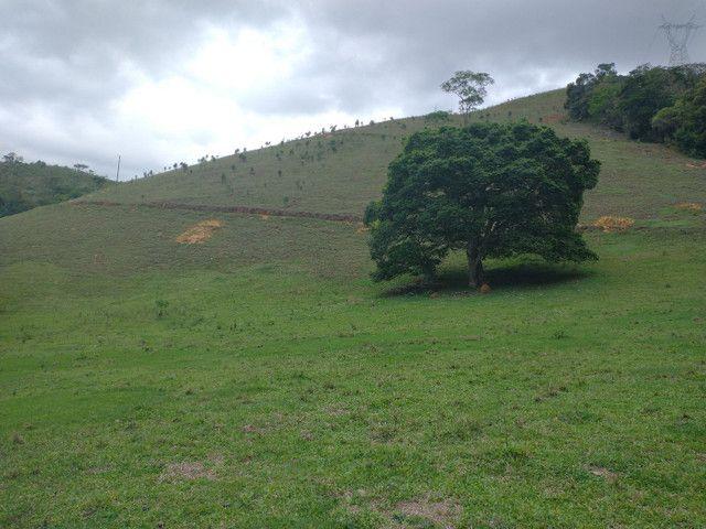 Fazendinha 74 hequitares região de Paraju
