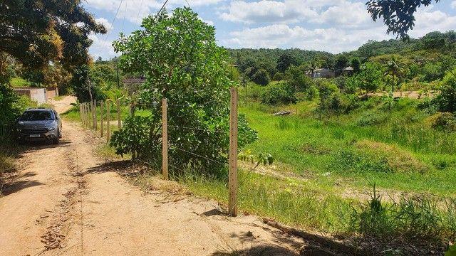 Vendo ótimo Terreno para Sítio- Passarinho - Foto 6