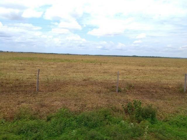 Fazenda 9.900 ha São Felix Do Araguaia - Foto 9