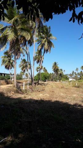 Patacho, venha morar ou ter um negocio em uma das praias mais belas do país. - Foto 11