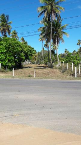 Patacho, venha morar ou ter um negocio em uma das praias mais belas do país. - Foto 8