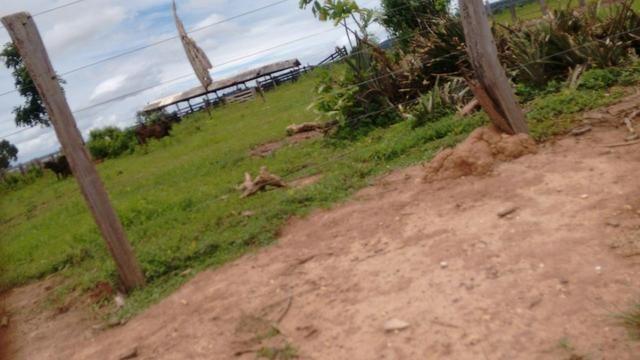 Vendo Fazenda com 1.523 Hectares na região do Manso - Foto 7