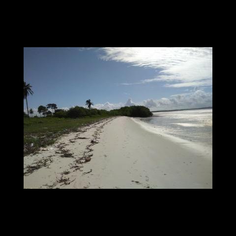 Casas de praia, Lotes para construção costa de Itapema - Foto 9