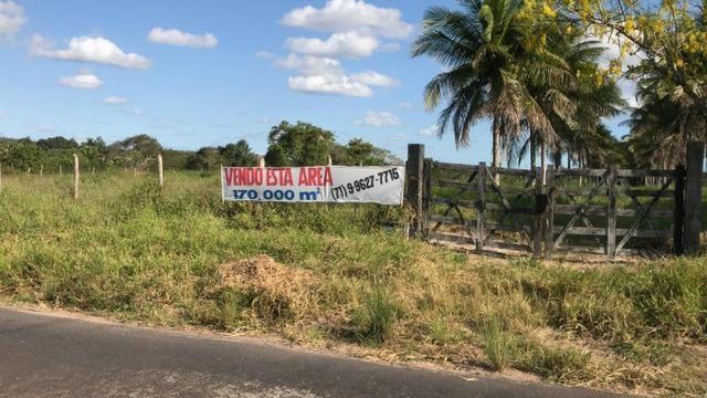 Vendo propriedade em Alagoinhas/Ba