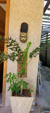 Imobiliária Nova Aliança!!! Vende Casa Alto Padrão na Fazenda Muriqui - Foto 10