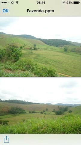 Venda-se está fazenda de 323 Alqueires no Estado de minas Gerais/MG - Foto 4