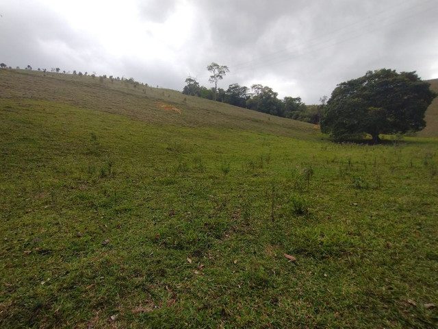 Fazendinha 74 hequitares região de Paraju - Foto 10