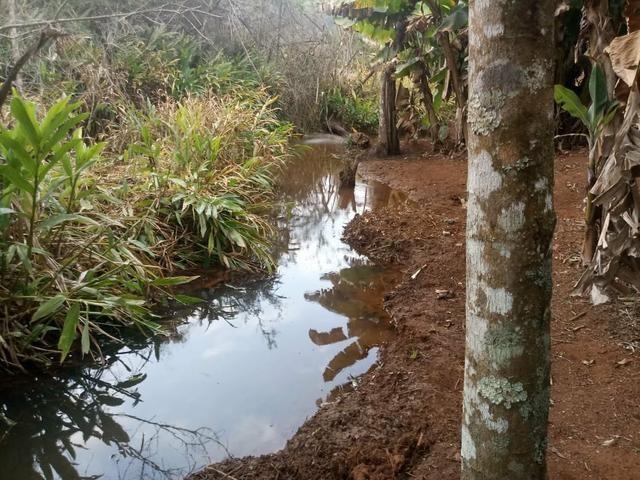 Sitio com agua em Claudio MG - Foto 19