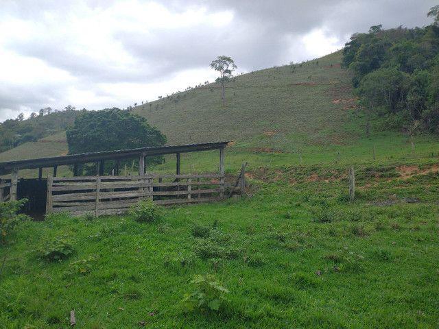 Fazendinha 74 hequitares região de Paraju - Foto 8