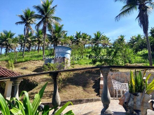 Belíssimo sítio em Sambaetiba com 10.000m² - Foto 4