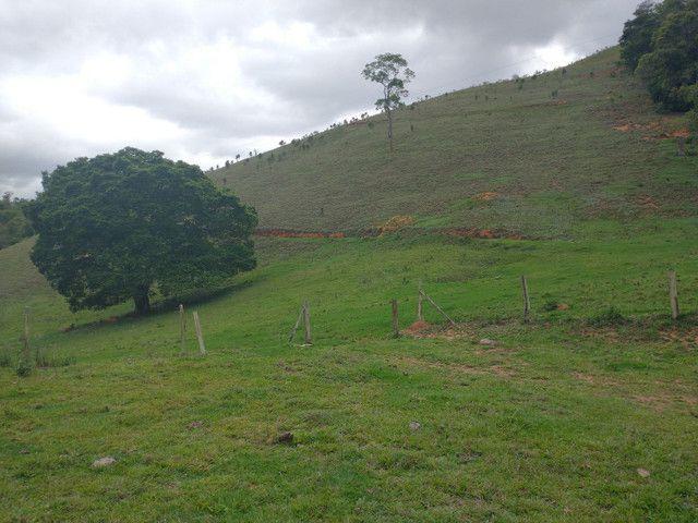 Fazendinha 74 hequitares região de Paraju - Foto 9