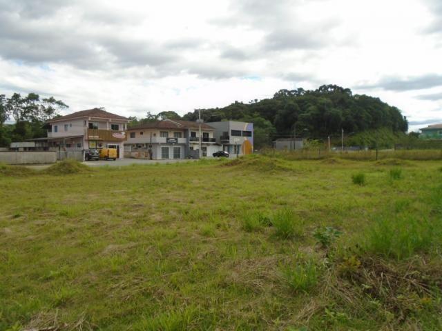 Terreno para alugar em Santa catarina, Joinville cod:08122.001 - Foto 4