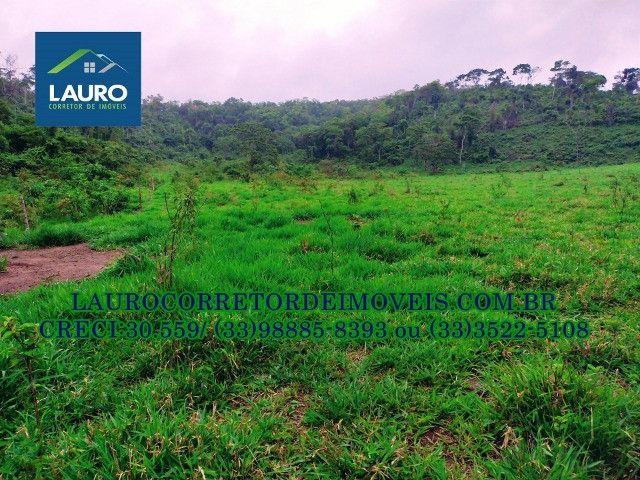 Fazenda com 20 alqueires (96,8 ha.) a 20 km de Teófilo Otoni -MG - Foto 19