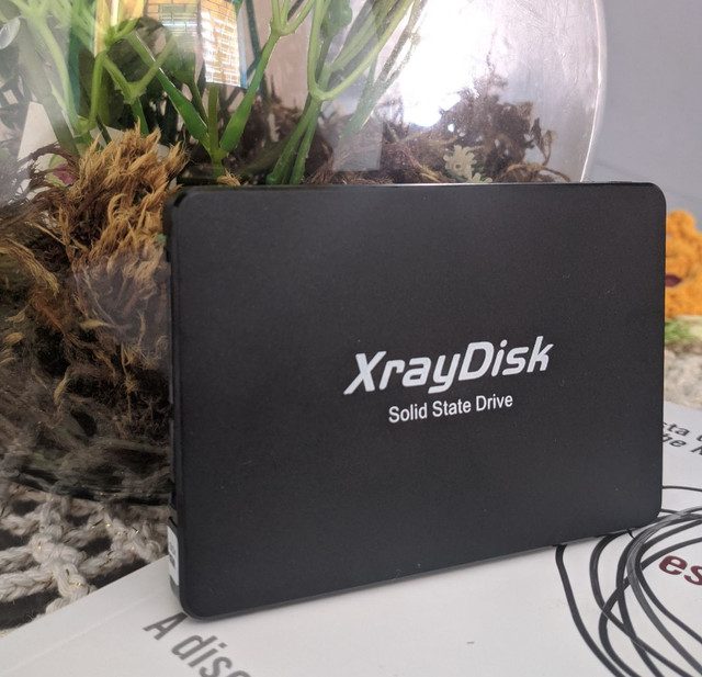 SSD NOVO 256Gb