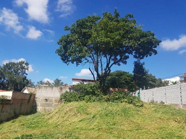 BELO HORIZONTE - Terreno Padrão - Trevo - Foto 6