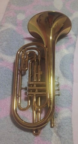 Trombonito em Sib - Foto 4