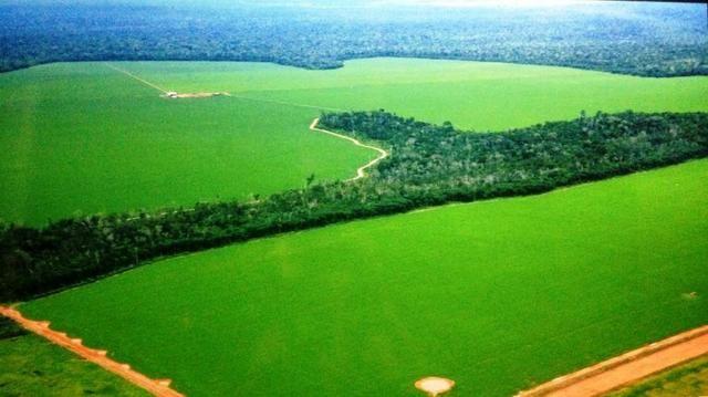 Fazenda 5050 ha com 2300 em Lavoura Porto dos Gauchos MT