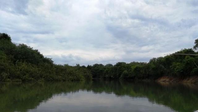 Fazenda 9.900 ha São Felix Do Araguaia - Foto 2