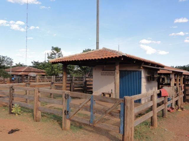 Fazenda 6,000 ha Vale do Araguaia MT. Cinematográfica - Foto 10