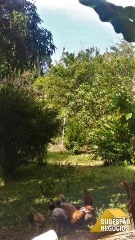 Chácara em tapirai para lazer ou moradia | 2991 - Foto 9