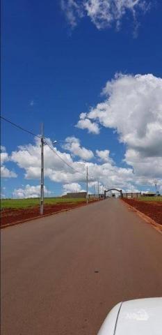 8046 | Terreno à venda em Rodovia, Iguaraçu - Foto 6