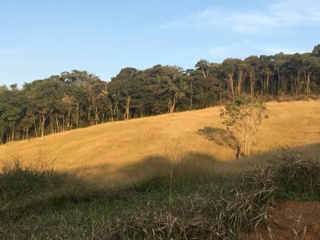 GE compre seu terreno plano para final do ano por apenas: R$10.000 de entrada 1000m2. - Foto 4