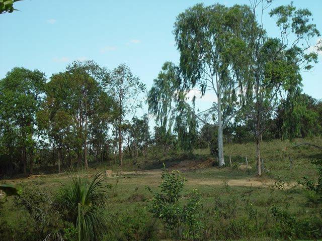 Vendo Fazendinha com 95.700 m² em Três Marias/Morada Nova