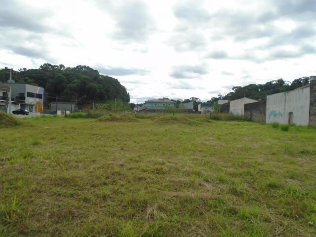 Terreno para alugar em Santa catarina, Joinville cod:08122.002 - Foto 2