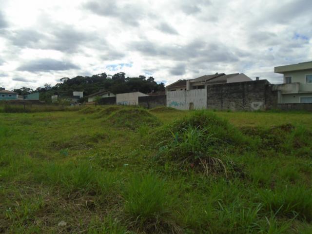 Terreno para alugar em Santa catarina, Joinville cod:08122.001 - Foto 14