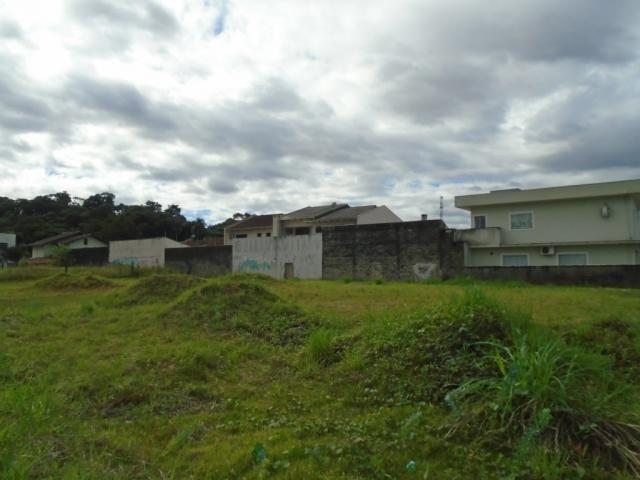 Terreno para alugar em Santa catarina, Joinville cod:08122.002 - Foto 6