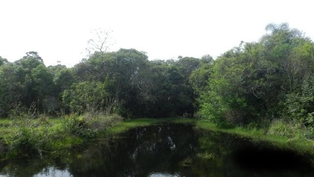 Velleda of sítio 12ha 9 açudes, campo, 5km RS040, produzir, morar ou lazer - Foto 2