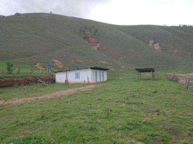 Fazendinha 74 hequitares região de Paraju - Foto 13