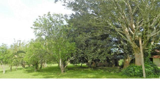 Velleda of sítio 12ha 9 açudes, campo, 5km RS040, produzir, morar ou lazer - Foto 6