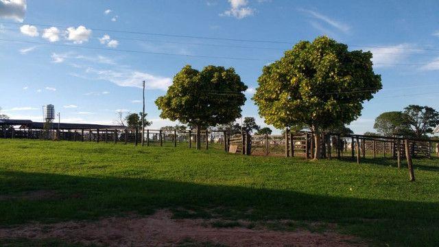 Fazenda em Buritizeiro - Foto 8