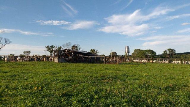 Fazenda em Buritizeiro - Foto 7