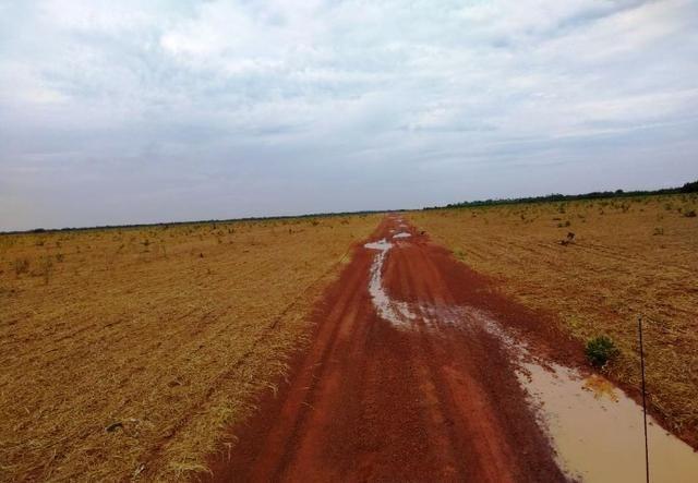 Fazenda 9.900 ha São Felix Do Araguaia - Foto 12