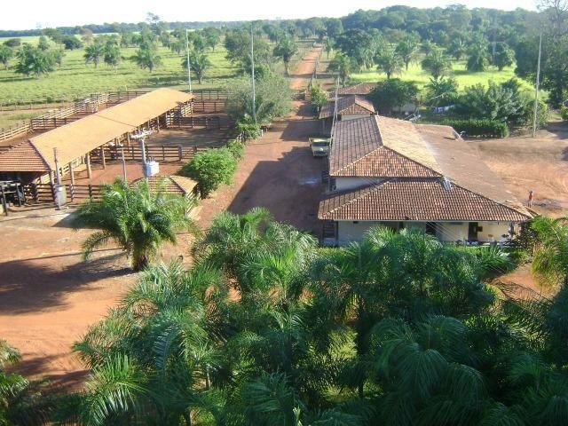 Fazenda 6,000 ha Vale do Araguaia MT. Cinematográfica - Foto 12