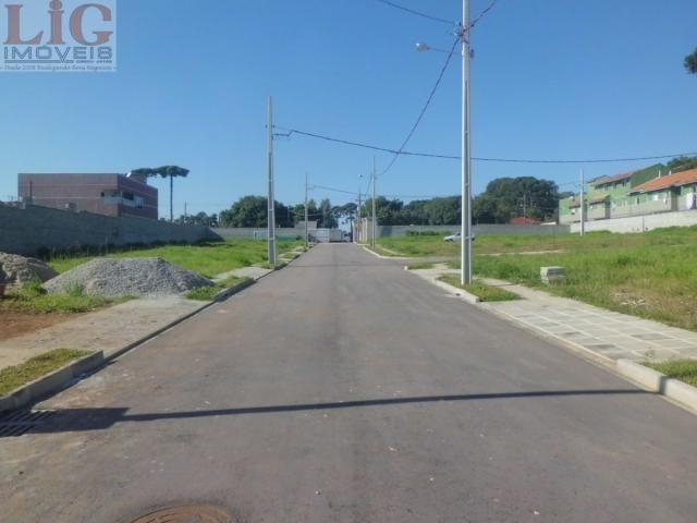 Terreno, Pinheirinho, Curitiba-PR - Foto 6