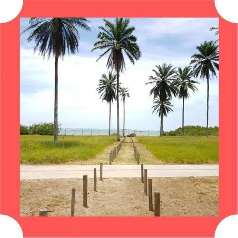 Lotes em Saubara, Costa de Itapema- Pagamento Facilitado, Praia Privativa - Foto 17