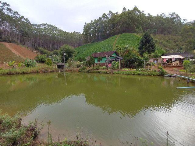 Propriedades 10 alqueires Araguaia - Foto 5