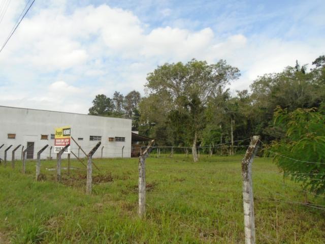 Terreno para alugar em Pirabeiraba, Joinville cod:00444.008 - Foto 4