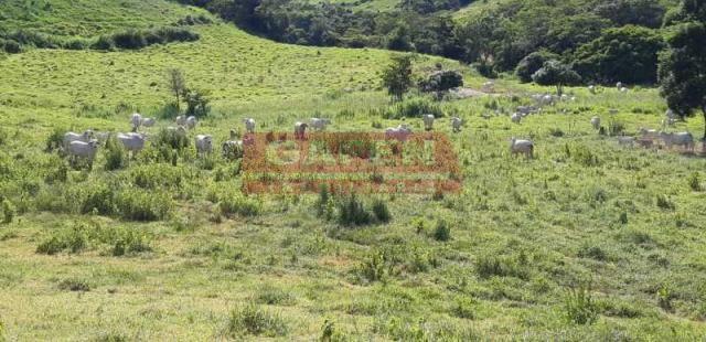 OPORTUNIDADE 2 FAZENDO JUNTAS EXCELENTE INVESTIMENTO !! - Foto 19