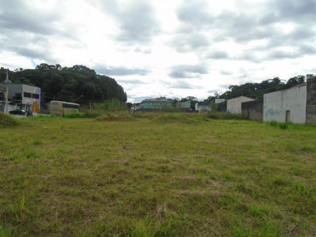 Terreno para alugar em Santa catarina, Joinville cod:08122.002 - Foto 3