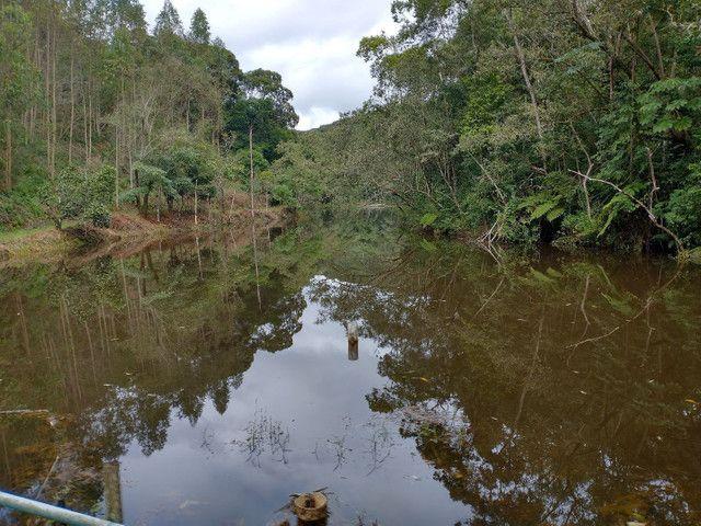 Propriedades 9 alqueires Araguaia - Foto 2