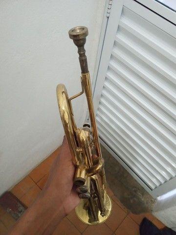 Trompete Michael mod  - Foto 5