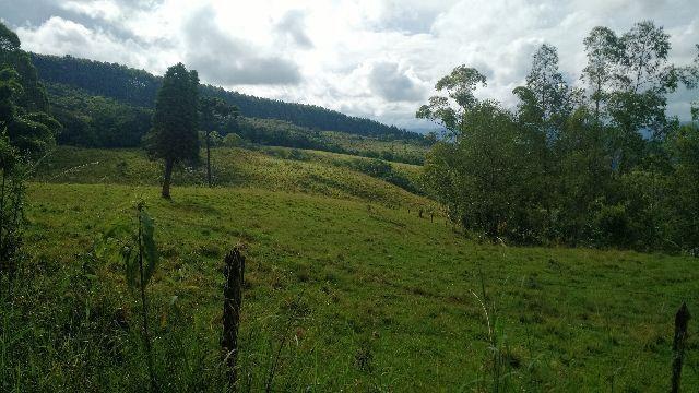 Fazenda 110 alqueires em Ortigueira