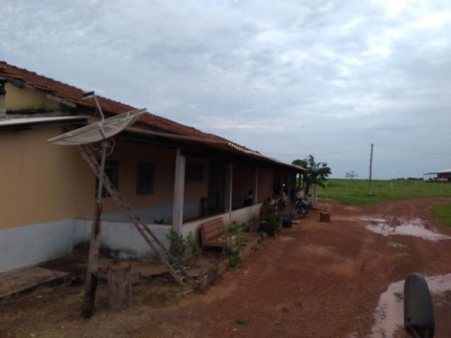 Fazenda 9.900 ha São Felix Do Araguaia - Foto 17
