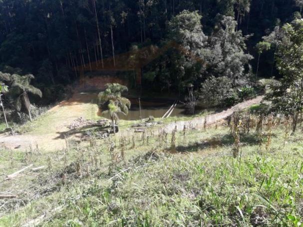 Chácara para venda em campina grande do sul, capivari - Foto 6