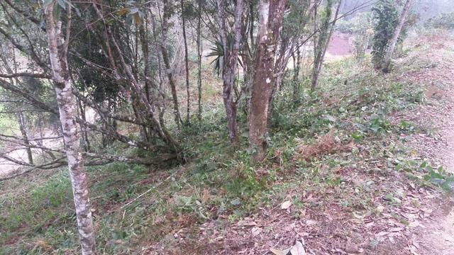 Terreno parcelado alto gasparinho - leia o anúncio - Foto 9